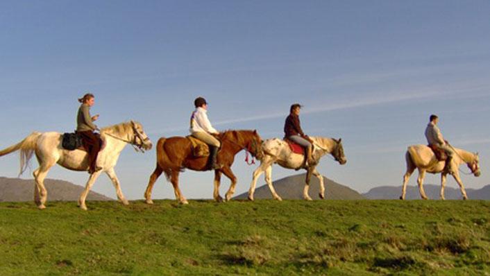 Stages d'équitation en euskara