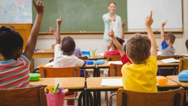 Il y a trois modèles d'enseignement bilingue : la parité horaire, le basque renforcé et l'immersion