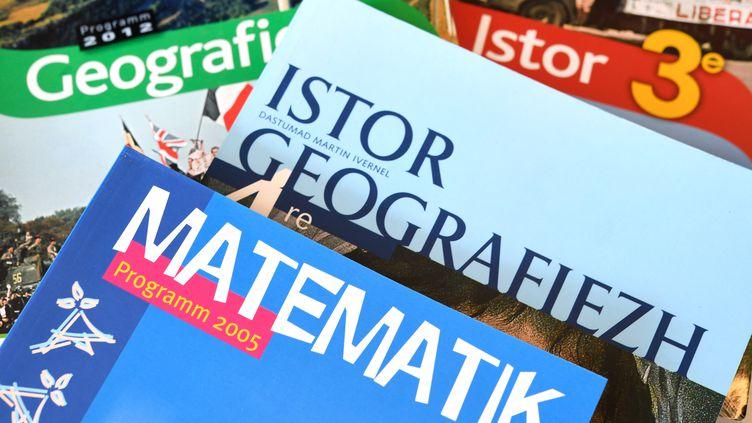 Conférence en ligne : la loi des langues régionales, un espoir pour l'euskara ?